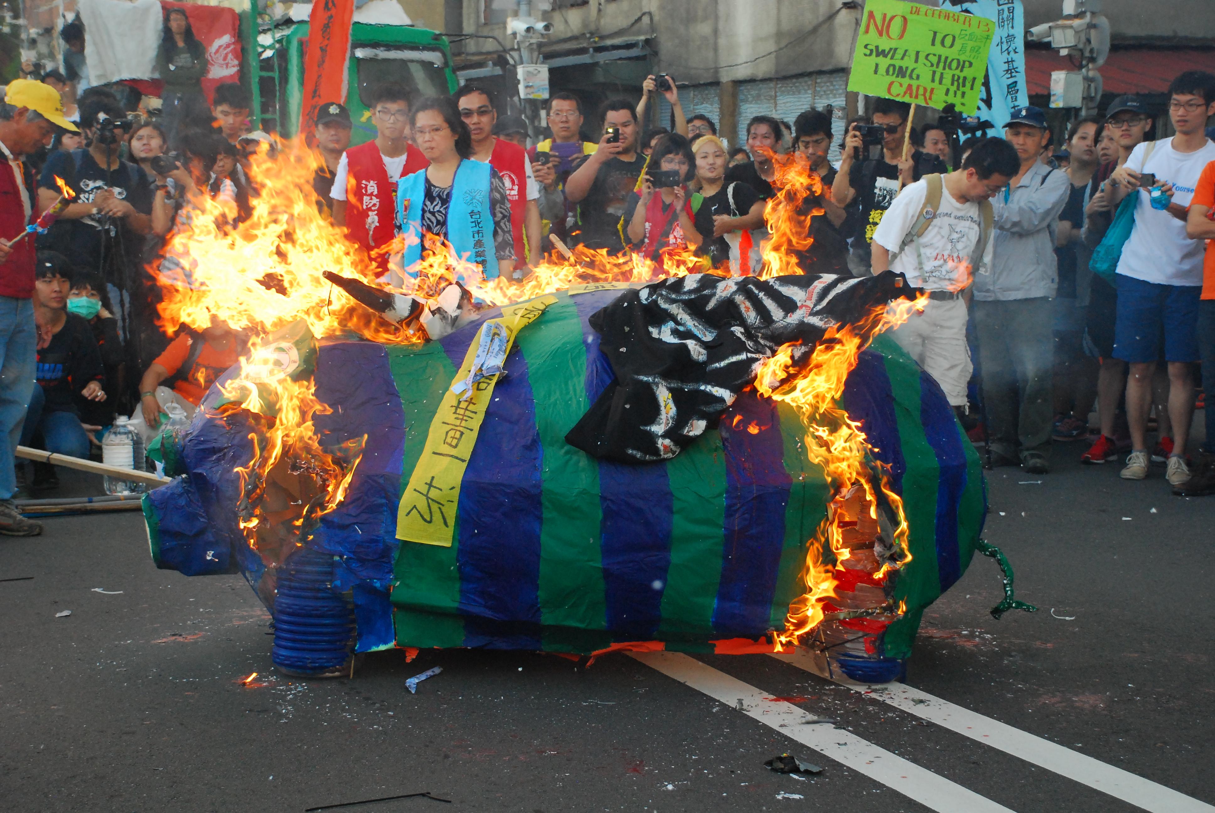 秋鬥於蔡英文競選總部上演焚燒藍綠小豬的重頭戲。 圖/鄭晏欣攝